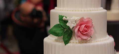 White wedding cake with single pink rose.